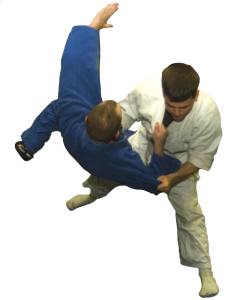 judo representing sales science of feel felt found